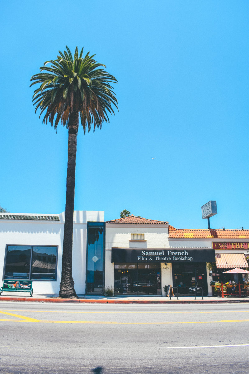 The Perfect Bookshop for Actors & Filmmakers